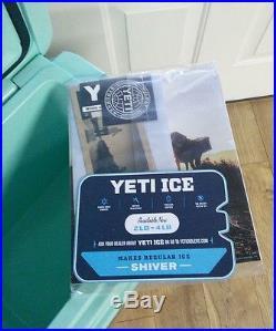 Yeti Roadie 20 Cooler In Seafoam Green NEW